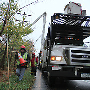10/30/12 - Newark, DE - Hurricane Sandy - Crews from Lewis tree services begin clearing over head lines of debris on Sunset Lake Rd, Tuesday, Oct. 30, 2012, in Newark DE. ..SAQUAN STIMPSON/Special to The News Journal