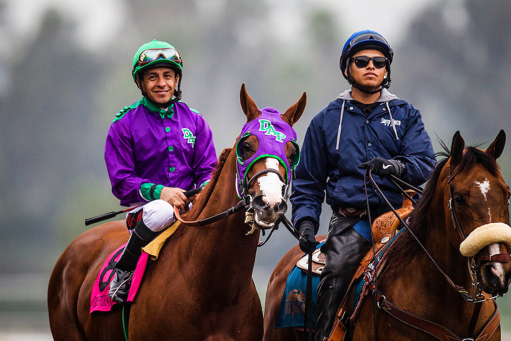 February 07 2015: California Chrome and Victor Espinoza at the San Antonio Stakes at Santa Anita Park in Arcadia CA. Alex Evers/ESW/CSM
