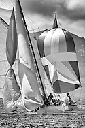 Viola, a 1908 Gaff Cutter and Rosemary, a 1925 Bermudan Sloop. <br />