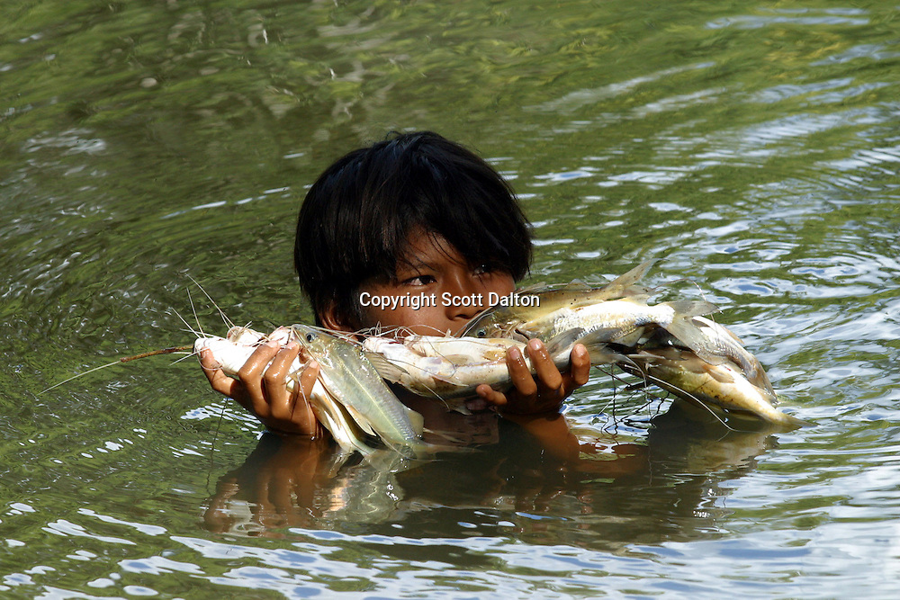 A Kichwa indian boy holds his catch of fish in Sarayaku, a small Indian village deep in Ecuador's Amazon region on Sunday, October 26, 2003. The community of Sarayaku is against any attempt to look for oil on their territory because they say it will destroy the jungles that provide them with their food. Nevertheless the Ecuadorian government and foreign oil companies are determined to explore for oil in Ecuador's Amazon region. (Photo/Scott Dalton)
