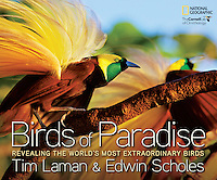 It has been eight years in the making, but Tim's book, with collaborator Edwin Scholes, BIRDS OF PARADISE: REVEALING THE WORLD'S MOST EXTRAORDINARY BIRDS is complete. The books are now on sale and if you buy it directly from us, Tim will sign your copy.
