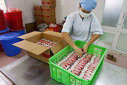 Ms. Do Thi Hoa Bao, of the National Institute of Nutrition HEBI Processing Unit, organizes therapeutic food packets developed jointly by NIN, IRD and UNICEF and processed at the University of Agriculture in Hanoi, Vietnam, Southeast Asia