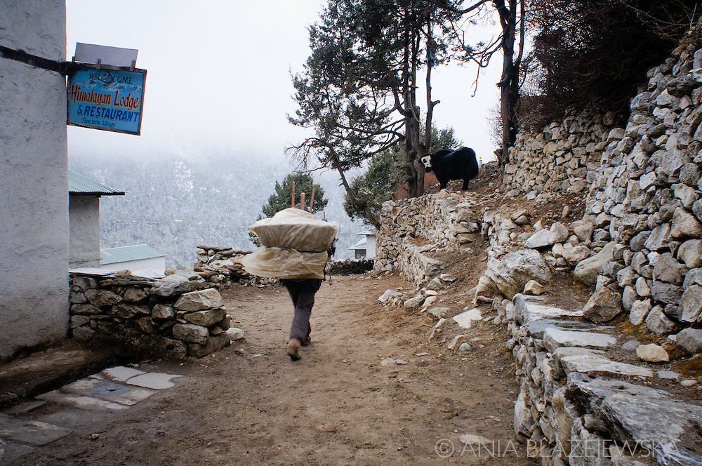 Nepal, Himalayas. Porter carrying a basket on the mountain trail in Everest region.