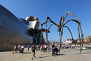Louise Bourgeois' Maman sculpture sits outside the Guggenheim Museum in Bilbao. There are various bronze casts of the original that sit outside museums around the world.