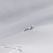 SHOT 3/12/10 11:27:45 AM - Fresh tracks through powder while skiing and snowboarding at Silverton Mountain in Silverton, Co. Silverton Mountain is unique amongst ski resorts requiring a guide (most of the season), avalanche gear and limiting the number of daily visitors. There are multiple bowls, chutes, cliffs and natural terrain features to be discovered during a visit to Silverton Mountain. It is the highest Ski Area in North America with a peak of 13,487' and it is also the steepest with no easy way down. The mountain is left in it's natural state with the exception of the avalanche reduction work which occurs. There is only one chair at the mountain though most skiiers and snowboarders will end up hiking in various directions at the top. The mountain also features heliskiing trips for $159 a trip (at the time of visit). The mountain opened in 2002. (Photo by Marc Piscotty / © 2010)