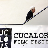 A festival-goer walks to a film screening during the final day of the Cucalorus Film Festival Sunday November 16, 2014 at Thalian Hall in Wilmington, N.C. (Jason A. Frizzelle)