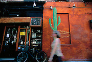 Image of an East Village wall mural at Fifth Street and Second Avenue, Manhattan, New York City, New York