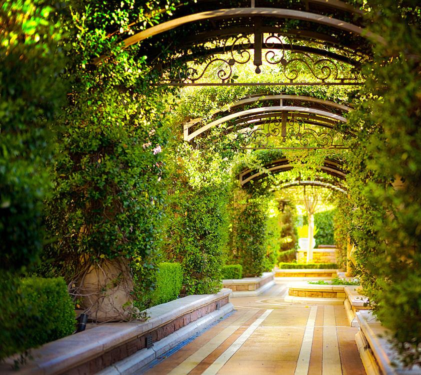 Bellagio Venetian Caesar 39 S Palace Las Vegas Botanical