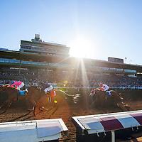 December 26 2014: Sams Sister with Elvis Trujillo up wins the La Brea Stakes at Santa Anita Park in Arcadia CA. Alex Evers/ESW/CSM
