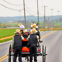 Amish Family on Horse and Buggy in Lancaster County, Pennsylvania<br /> There are thousands of Pennsylvania Amish living the simple life in Lancaster County. Most are farmers or engaged in cottage industries, such as crafts and furniture making. Driving maps of the area are available from local visitor centers. You will need to share the road with the horse and buggies. This family was too large for their vehicle. Therefore, the two eldest sons were dragged behind on their inline skates.