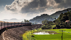 Train rounds a bend beside rice fields in the mountainous landscape near Tuy Hoa City, Phu Yen Province, Vietnam, Southeast Asia