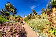 Desert Garden, The Huntington Library, Art Collections, and Botanical Gardens, California