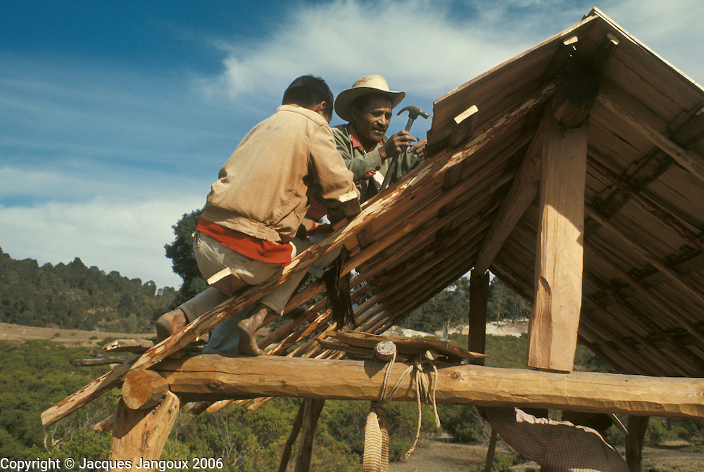 Mexico Oaxaca State Mixtec Indian men building wooden house