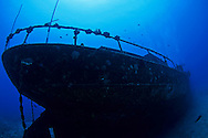 Carthaginian II Profile, Maui Hawaii