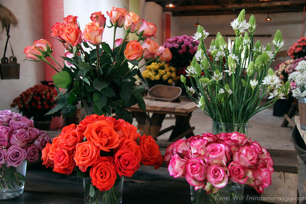 South America, Ecuador, Cayambe. Rosadex Rose arrangements displayed at Hacienda Compania.