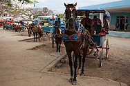 Coche de caballos in Niquero, Granma, Cuba.