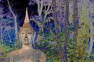 Buddha Statue, Wat Mahathat, Sukhothai Historical Park, Sukhothai, Thailand,Limited edition of 50