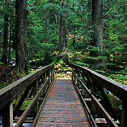 Wooden bridge over the East Fork Bull River along the St. Paul Lake trail. Cabinet Mountains Wiilderness Area, northwest Montana