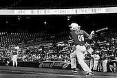 2011 Congressional Baseball