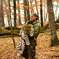 John with tranquillised Amur leopard, Russia.