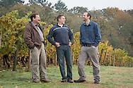 Cristom Winery, Eola-Amity HIlls, Willamette Valley, Oregon
