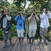 Birdwatchers. Photographed at Tambopata Research Center Lodge (a lodge of Rainforest Expeditions) in the Tambopata National Reserve.