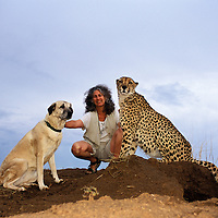 Dr. Laurie Marker, Koya and Chewbakka.Koya, Laurie Marker and Chewbakka. Dr. Laurie Marker has been working with Cheetahs since 1974 (for nearly 30 years). She began in Oregon, USA, and began her early research in Namibia in 1977. In 1990 she moved to Namibia and set up the Cheetah Conservation Fund as the first conservation organisation solely dedicated to Cheetah conservation. Non-lethal predator control using Livestock Guarding Dogs is vital for the future of the Cheetah in Namibia. Laurie has pioneered the use of Anatolian Shepard, a Turkish breed of livestock guarding dog, in Namibia; to date a total of 160 dogs have been placed on Namibian farms.