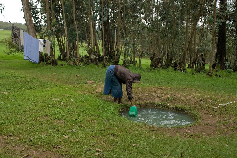 La source du Mont Entoto (3100 m) au nord d'Addis Abeba est la principale alimentation en eau de cette ville de 15 millions d'habitants. L'accès à la source, gérée par une coopérative locale est payante. Ceux qui n'en ont pas les moyens creusent de simples trous à même le sol et se partage une eau polluée et porteuse de maladies. Éthiopie ao?t 2011.