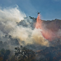 A helicopter drops red fire retardant on the advancing fire to slow it while bulldozers finish fire breaks further down the canyon at the La Brea Fire, California.