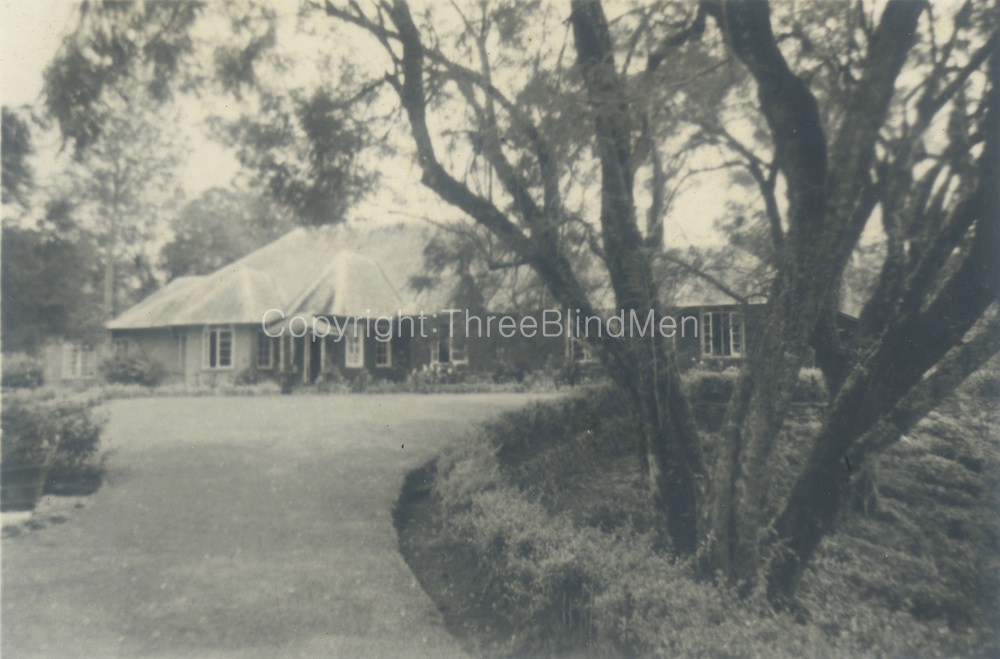 David Leask Collection.<br /> Batalagalla Estate. P.D.'s bungalow.