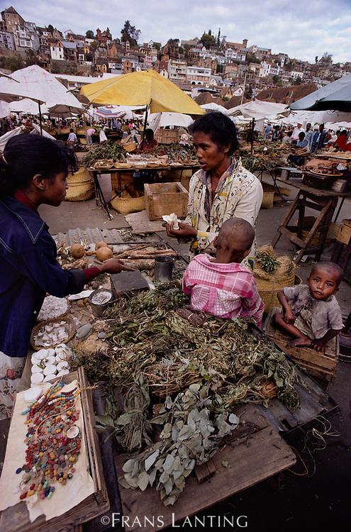Medicinal plants at market, Antananarivo, Madagascar