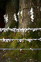 Wish Papers, Omikuji - Omikuji or paper wishes, are a method used for divining personal fortunes by drawing straws from a cylinder and then receiving a printed fortune or corresponding to a cypher printed on the stick. This is the type of omikuji found most commonly today at shrines.