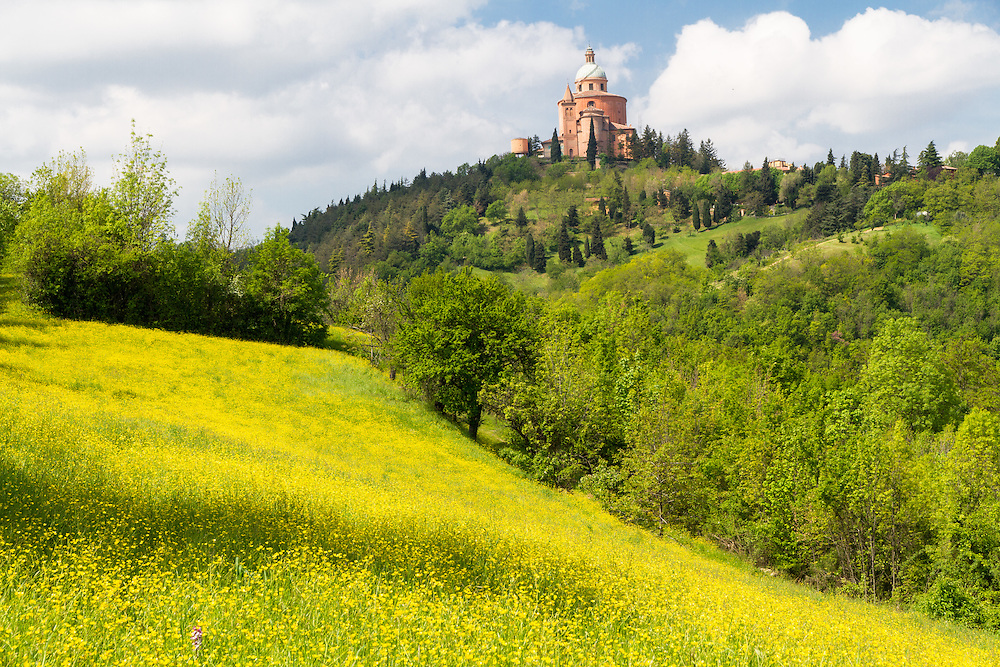 Parco del Pellegrino (Bologna), the yellow moment, with St. Luke's Sanctuary in the background. Finalist in the Wiki Loves Monuments Italian contest 2016