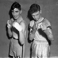 On left is H Bradley (Phoenix) at the National Junior Boxing Championships - light/middleweight runner up.18/12/1952