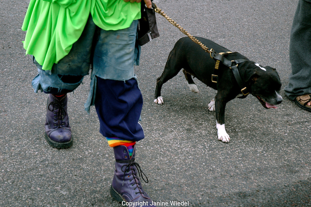Man with staffordshire terrier on chain lead