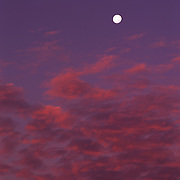 Setting moon in Coral Pink Sand Dunes State Park, Utah.