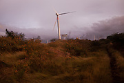 "A constant and powerful wind blows through La Venta, Oaxaca where foreign companies have build wind farms. ..The Isthmus of Tehuantapec, long a center for indigenous land ownership, is now embroiled in a land dispute over wind farm land...Called ""Mexico's little waist,"" the Isthmus is a wind tunnel that links the Gulf of Mexico to the Pacific through mountain passes at the narrowest part of Mexico. The geographical funnel makes it one of the windiest places in North America and for a decade wind energy companies have been jostling to acquire land to power the likes of Coca-Cola and Wal Mart."