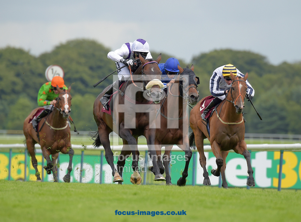 Glen Moss ridden by Paul Mulrennan (white with purple braces) wins bet365 Conditions Stakes during the bet365 Old Newton Cup meeting at Haydock Park, Merseyside, UK<br /> Picture by Martin Lynch/Focus Images Ltd 07501333150<br /> 02/07/2016