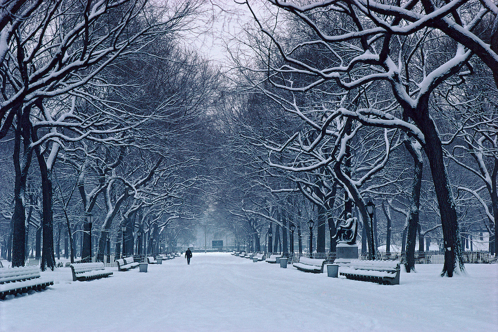 Central Park, New York City, New York, Manhattan, Poets Alley, Snow