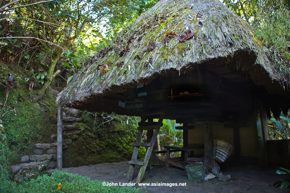 The dukligan or fertility hut is located next to the Cafe. In traditional Ifugao practice,couples stay there for a month so as to mate. If the woman fails to conceive within that period, the man is allowed to sleep with another woman without forfeiting the marriage. Same goes with the woman, she can sleep with another man to find out which of them is infertile.Talk about ingenuity in the absence of technology.