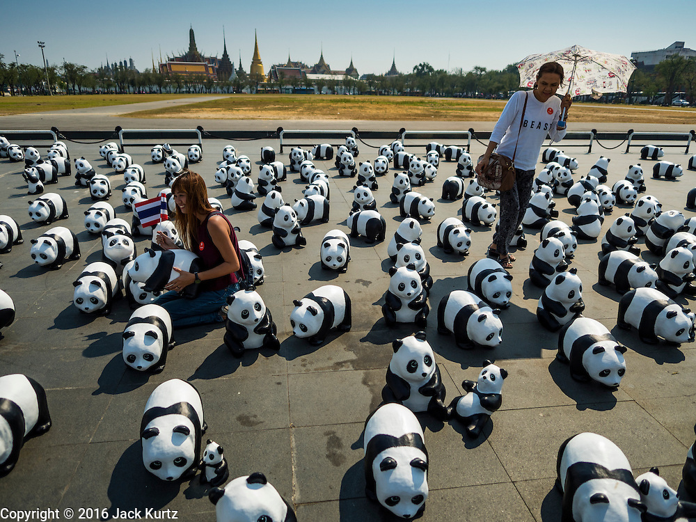 """04 MARCH 2016 - BANGKOK, THAILAND: People walk among the paper maché pandas at the  opening of the """"1600 Pandas+ World Tour in Thailand: For the World We Live In and the Ones We Love"""" exhibit in Bangkok. The 1600 paper maché pandas, an art installation by French artist Paulo Grangeon will travel across Bangkok and parts of central Thailand for the next week and then will be displayed at Central Embassy, a Bangkok shopping mall, until April 10. The display of pandas in Thailand is benefitting World Wide Fund for Nature - Thailand and is sponsored by Central Embassy with assistance from the Tourism Authority of Thailand and Bangkok Metropolitan Administration and curated by AllRightsReserved Ltd.     PHOTO BY JACK KURTZ"""