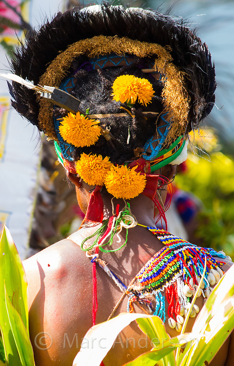 Rear view of a tribeswoman wearing traditional dress at the Goroka Show in Papua New Guinea. Her headdress is adorned with a crown of birds feathers and yellow flowers.