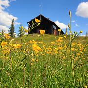 Landscapes Midt-Norge