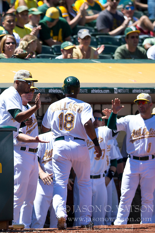 OAKLAND, CA - MAY 26:  Alberto Callaspo #18 of the Oakland Athletics is congratulated by teammates in the dugout after scoring a run on a sacrifice fly hit off the bat of Coco Crisp #4 (not pictured) during the fourth inning against the Detroit Tigers at O.co Coliseum on May 26, 2014 in Oakland, California. The Oakland Athletics defeated the Detroit Tigers 10-0.  (Photo by Jason O. Watson/Getty Images) *** Local Caption *** Alberto Callaspo