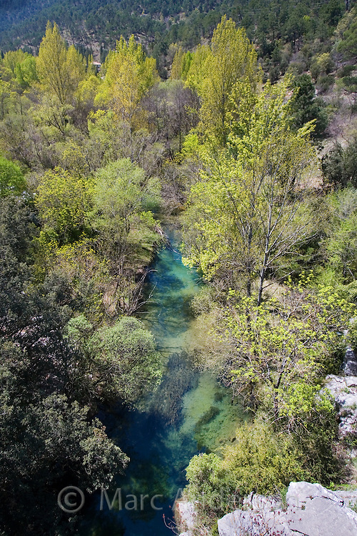 View of a river surrounded by trees, Cazorla National Park, Jaen Province, Spain