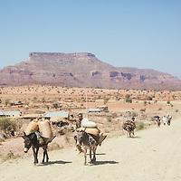Amhara