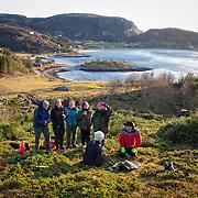 Stokkøya - Aksjon mot sitkagran (Picea sitchensis)