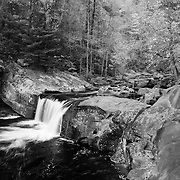 Little Bald River Falls - Autumn - Black & White