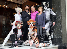 JUL 07 2014 Return of the musical Cats