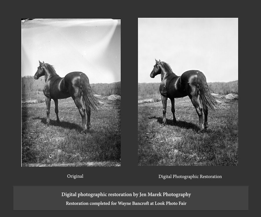 Images restored for Look Photo Fair.<br /> A closer look at the before and after areas of the restoration. Restoration completed using a digital scan of the glass negative.